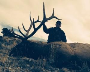 1411 Shaun Lorgar Elk
